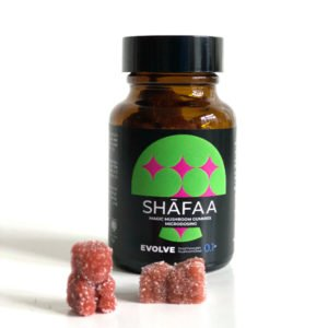 Shafaa Evolve Magic Mushroom Microdosing Gummy Bears