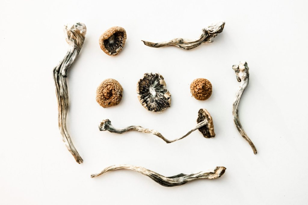 5 Reasons to Buy Magic Mushroom Online in Canada