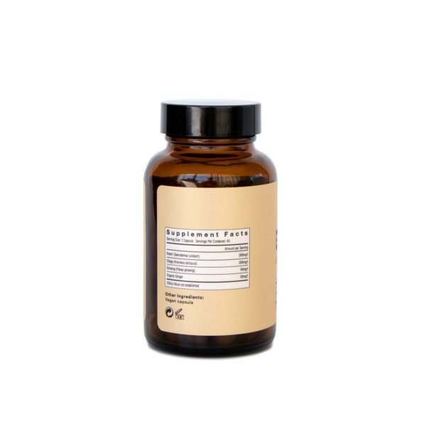 Be Energized Booster Mushroom Supplement Capsules Back