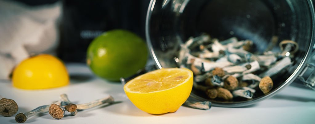 lemon tekking 1